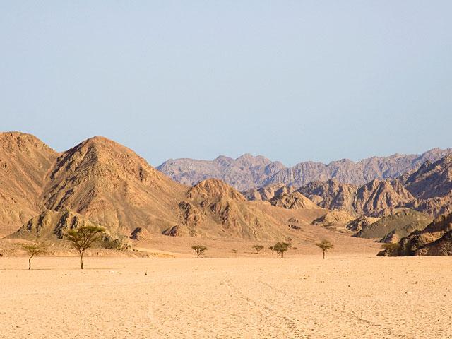 Еще натри месяца продлен режимЧП насевере Синайского полуострова