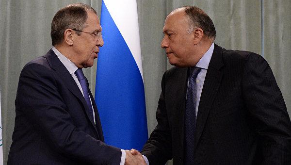 Лавров обсудил ситуацию вСирии сглавой МИД Египта